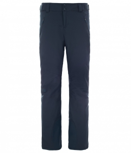 Штаны мужские горнолыжные The North Face W Ravina Pant Urban Navy p.XS (TNF T92TXX.H2G)