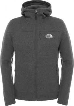 Худи The North Face Gordon Lyons Hoodie asphalt grey heather